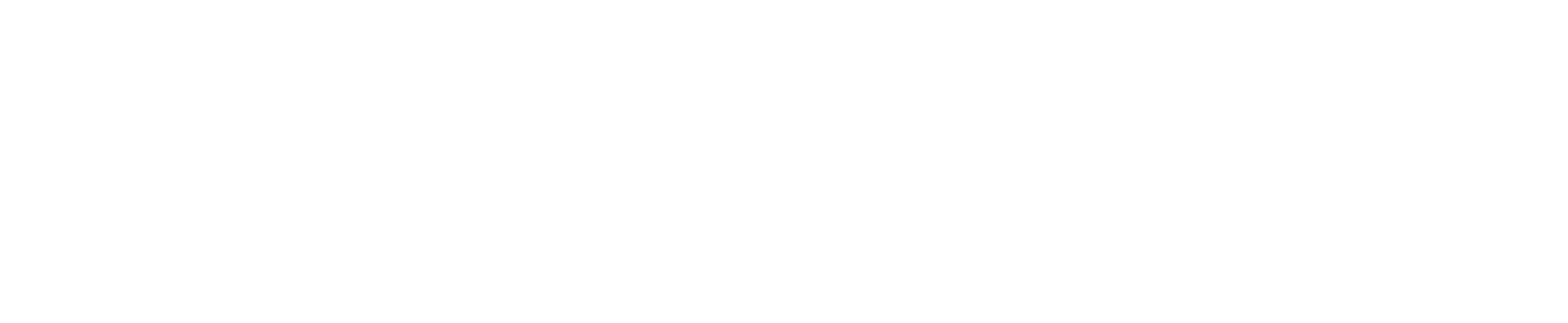 SEAuto-Group-Logo